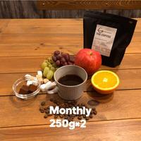 【月に1回/250g×2種】Single Origin Coffee Club シングルオリジンコーヒークラブ