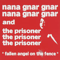 FALLIN ANGEL ON THE FENCE (CD)  2010/12/08