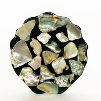 Lucite shell plate