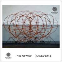 """3D Art Work"" 【 Seed of Life 】完成作品"