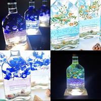 おうちで水族館♫海の灯り LEDライト1台&海の生き物泳ぐ白砂ビーチの海の世界 2種アクアリウム