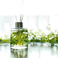 森林浴のグリーンインテリア 天然100%アロマディフューザー