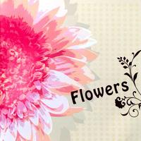 オムニバスアルバム「Flowers」