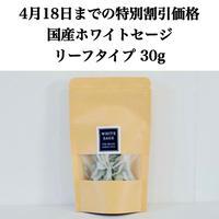 【4月18日までの期間限定価格!ご購入者様限定!500円クーポン発行】国産ホワイトセージ リーフタイプ 30g