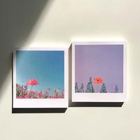 flower memo