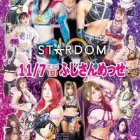 【指定B席】 STARDOM 富士大会 2021年11月7日(日)
