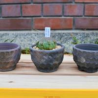 Shigaraki Pot -窯変面取り-