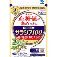KOBAYASHI Pharmaceutical SALACIA100 60tablets 20days  (Diet support supplements)