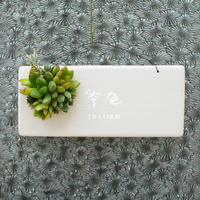 多肉植物のタブロー(TABLEAU)壁掛け 8cm×20cm ※9/1現在、お届けまで1か月予定