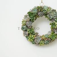 Wreath 多肉植物のリースL ※9/1現在、お届けまで1か月予定