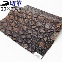 ワニ革・クロコダイル【20×20cm】アンティーク仕上げ/ブラウン/Aランク/wk608