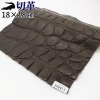 ワニ革・クロコダイル【18×18cm】マット仕上げ/焦茶/Aランク/wk411