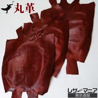 トカゲ革【三匹】ワイン/ツヤ仕上げ/背割り/0418