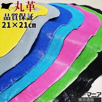 エイ丸革【品質保証21×21cm】ポリッシュ/全9色/eg02