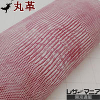 トカゲ革【一匹】ホワイト&ピンク ツートン/半ツヤ仕上げ/ 背割り/0176
