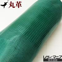 トカゲ革【最大幅32cm】ターコイズグリーン/ツヤ強/ 背割/0429