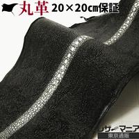 連石エイ革【一匹】黒【20×20㎝品質保証】7702