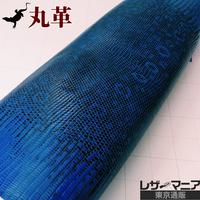 トカゲ革【最大幅31cm】ロイヤルブルー×黒/ツヤ強/腹割/ 0485