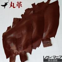 トカゲ革【三匹】焦茶/ツヤ仕上げ/背割り/0417