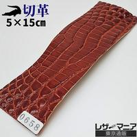 ワニ革・クロコダイル【5×15cm】金茶/ツヤ強/Sランク/w0658