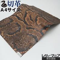 ヘビ革・モラレスパイソン【A4】ライトブラウン/ツヤ強/Bランク/ps510
