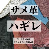 サメ・ハギレ革【合計8デシ保証】全3種 / 9903