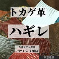 トカゲ・ハギレ革【合計8デシ保証】全2種 / 9902