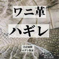 ワニ・ハギレ革【合計4デシ保証】全3種 / 9904