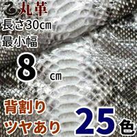 ヘビ【長さ30㎝切革/最小幅8㎝】Dパイソン/背割/ツヤあり/25色/pk4-08