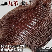 クロコダイル革【一匹】茶【16×16㎝/1級】ツヤ強/8821