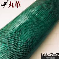 トカゲ革【最大幅33cm】ターコイズグリーン×黒/ツヤ強/背割/ 0492