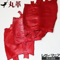 トカゲ革【三匹】レッド/ツヤ強/背割/0471