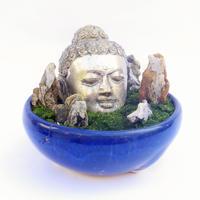 【仏像盆栽】苔(仏頭・石付き)