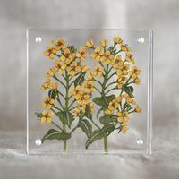 紙の花屋asanochiaki「菜の花」