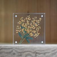 紙の花屋asanochiaki「ミモザ」