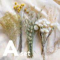 【A】ドライフラワー花材・Aセット
