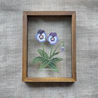 紙の花屋 asanochiaki「2輪のビオラ」