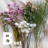 【B】ドライフラワー花材・Bセット