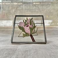 紙の花屋 asanochiaki「プロテア(ピンクアイス)」