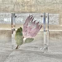 紙の花屋 asanochiaki「キングプロテア」