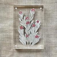 紙の花屋 asanochiaki「ヘリクリサムレッドジュエル 」