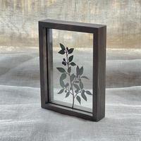 紙の花屋 asanochiaki「クロモジ」