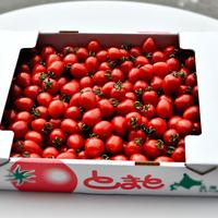 トマトベリー1箱(約3kg) 発送は6月以降になります