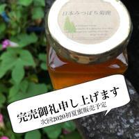 熊本山麓・日本みつばち菊鹿150g