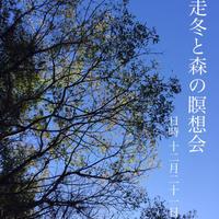 【森と海】12/21(土)開催 師走冬と森の瞑想会
