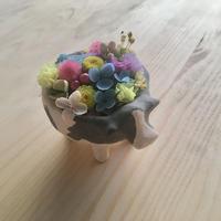 ちいさなお花のもりのうし (赤ちゃん うつわ)