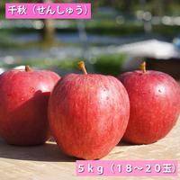 【送料無料】「千秋」5kg(16~18玉)【青森県産りんご:家庭用】
