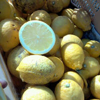 【再販開始!】レモン 5kg
