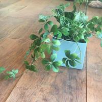 アーティフィシャルグリーン(造花)のアレンジメント