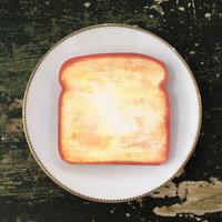 Toast Plane Memo